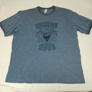 半袖Tシャツ☆ ブルーグレー XLサイズ(Tシャツ/カットソー(半袖/袖なし))