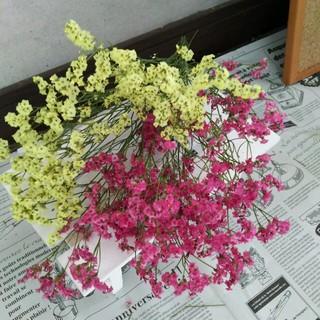 ドライフラワー花材HBスターチス(ドライフラワー)