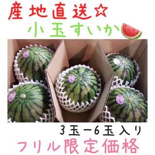 【週末SALE☆】産地直送!!熊本産☆小玉すいか3玉〜6玉入り*4(野菜)