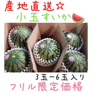 【週末SALE☆】産地直送!!熊本産☆小玉すいか3玉〜6玉入り*5(フルーツ)