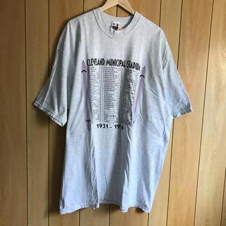 USA古着 BIGTシャツ(XXXL)90's vintage (Tシャツ/カットソー(半袖/袖なし))