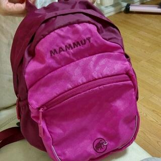 マムート(Mammut)のMAMMUT  マムート リュック 大人サイズ(リュック/バックパック)