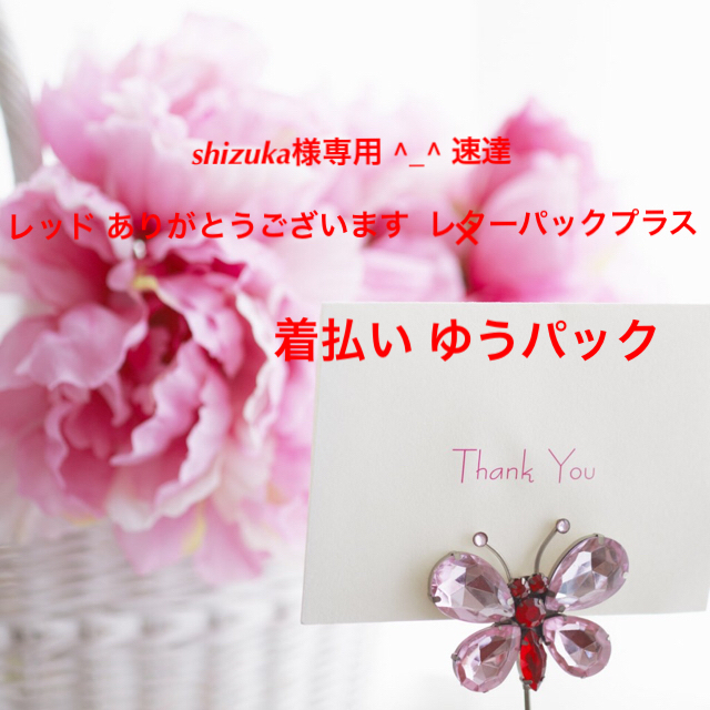 shizuka様 着払いのゆうパック 専用 ^_^ レッド ビキニ ニット レディースの水着/浴衣(水着)の商品写真