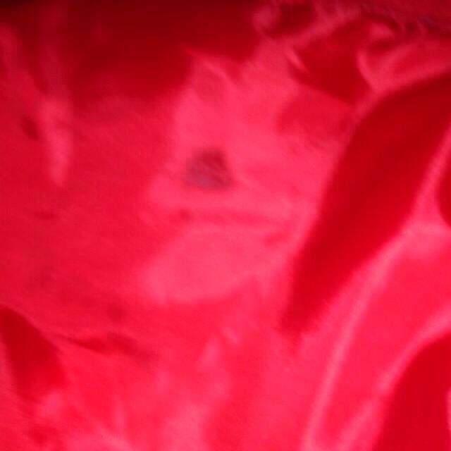 adidas(アディダス)のadidas赤リュック ♡♡ レディースのバッグ(リュック/バックパック)の商品写真