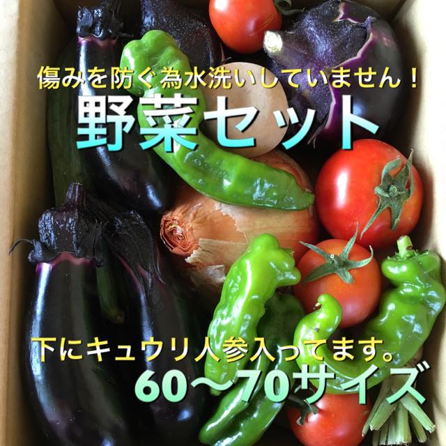野菜セット 60〜70 食品/飲料/酒の食品(野菜)の商品写真