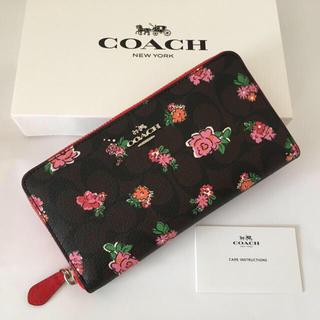 c7add8b30399 コーチ(COACH) フローラル 財布(レディース)(レッド/赤色系)の通販 31 ...