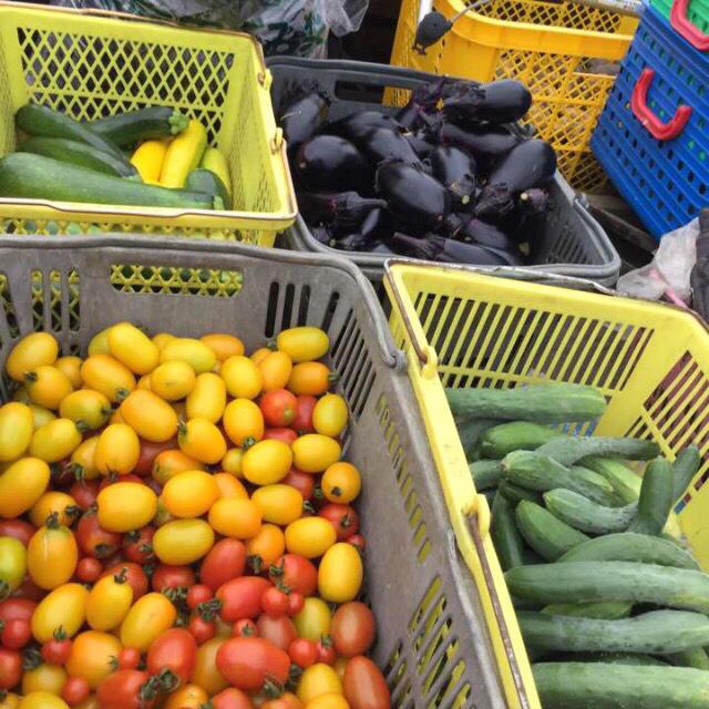 訳あり無農薬野菜詰め合わせ 食品/飲料/酒の食品(野菜)の商品写真