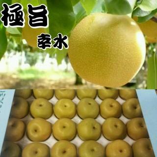 《お待たせ致しました!梨の予約販売開始!》幸水 送料無料1(フルーツ)