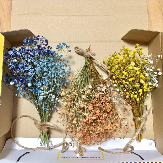 かすみ草ギフト ハンドメイドのフラワー/ガーデン(ドライフラワー)の商品写真