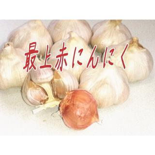 終了しました☆最上赤にんにくSサイズ1,880円送料込み☆山形の伝承野菜です(野菜)