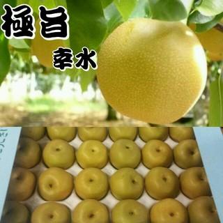 あーす様専用《お待たせ致しました!梨の予約販売開始!》幸水 送料無料(フルーツ)