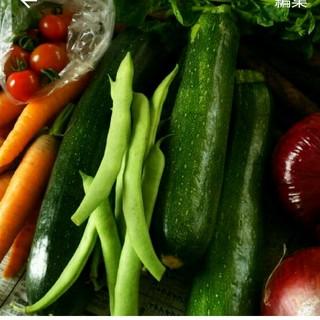 保冷発泡スチロール便 100サイズ  夏のスタミナお野菜(野菜)