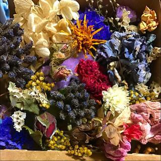 ドライフラワー 花材 #G 枝つき ナチュラル系(ドライフラワー)