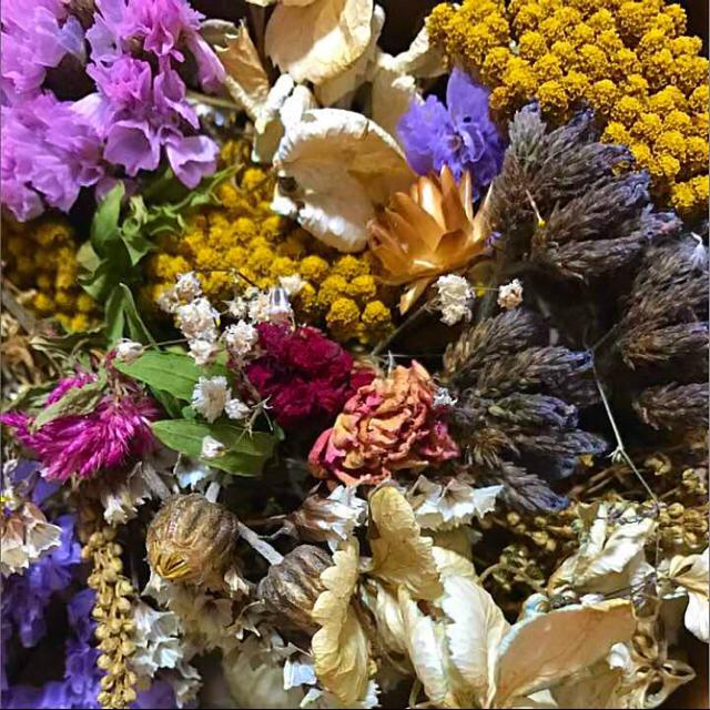 ドライフラワー 花材 #9 枝つき、ヘッド mix ハンドメイドのフラワー/ガーデン(ドライフラワー)の商品写真
