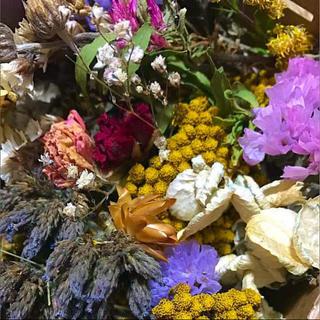 ドライフラワー 花材 #9 枝つき、ヘッド mix(ドライフラワー)