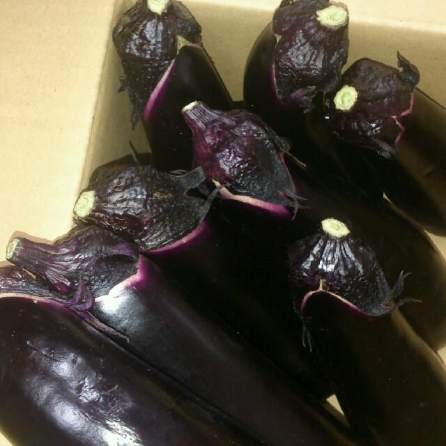 ☆千両なす 3㎏☆岡山産 食品/飲料/酒の食品(野菜)の商品写真
