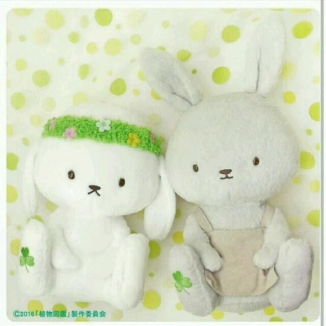 植物図鑑 ぬいぐるみ エンタメ/ホビーのおもちゃ/ぬいぐるみ(ぬいぐるみ)の商品写真