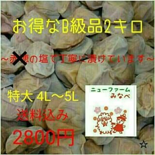 ままりん様専用☆南高梅の白干B10㎏(漬物)