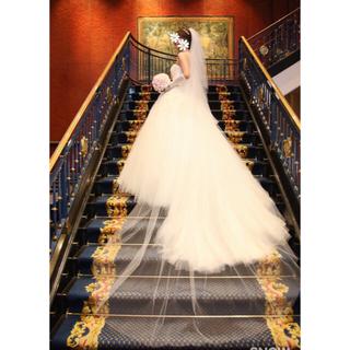 ヴェラウォン(Vera Wang)の【US6】レア♡verawang louisaルイーザ ウェディングドレス(ウェディングドレス)