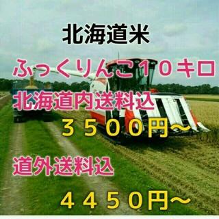 農家直売 28年産 北海道米 ふっくりんこ 10キロ(米/穀物)