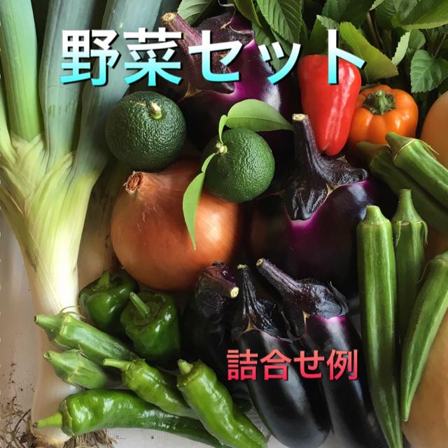 野菜セット 70 食品/飲料/酒の食品(野菜)の商品写真