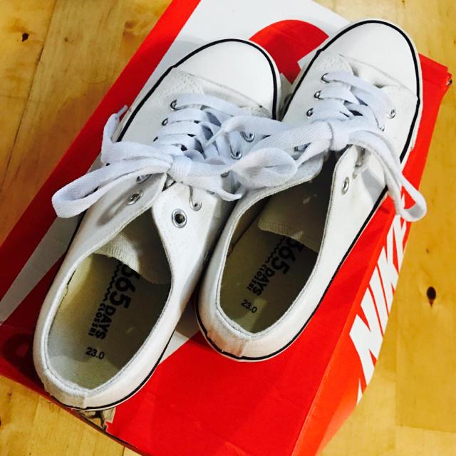しまむら(シマムラ)の美品 ✳︎ ローカット スニーカー  23cm 白 レディースの靴/シューズ(スニーカー)の商品写真