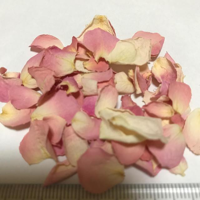 薔薇 ピンク⑦ ドライフラワー ハンドメイドの素材/材料(各種パーツ)の商品写真