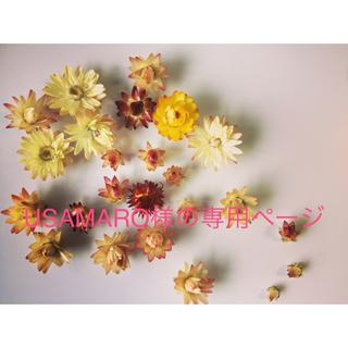 【お値下げしました】☆ドライフラワー花材☆(ドライフラワー)