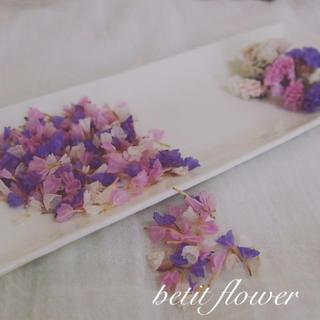 スターチス 3種* 紫×ピンク×淡ピンク *ドライフラワー(ドライフラワー)