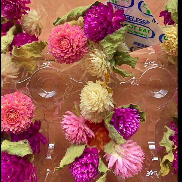 ドライフラワー 花材 千日紅 葉っぱ付き 70個 ハーバリウム ハンドメイドのフラワー/ガーデン(ドライフラワー)の商品写真