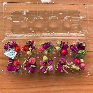 ドライフラワー 花材 千日紅 葉っぱ付き 70個 ハーバリウム(ドライフラワー)
