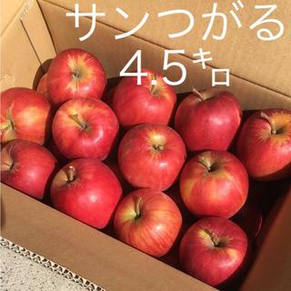 りんご サンつがる 訳あり 青森県産(フルーツ)