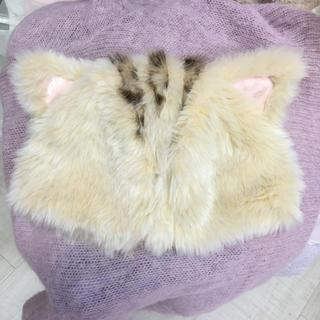 ミルク(MILK)のMILK ミルク kitten キトゥン cap 猫(キャップ)