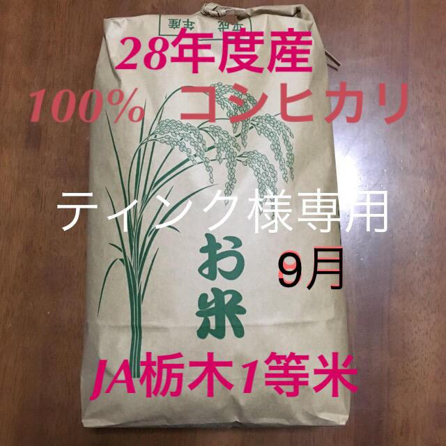 コシヒカリ  専用出品 食品/飲料/酒の食品(米/穀物)の商品写真