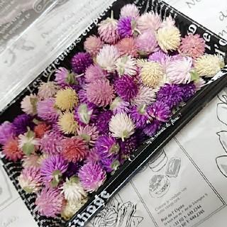 再販❣️ドライフラワー♡千日紅 ヘッド 100個 詰め合わせ 花材 ハンドメイド(ドライフラワー)