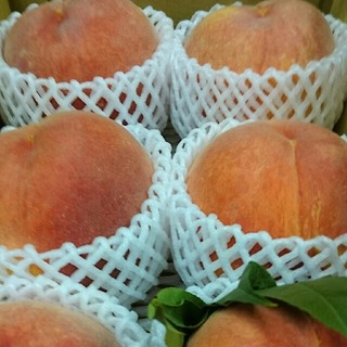 送料無料☆敬老の日に(大玉)濃厚な甘さのマンゴーピーチきららのきわみ(フルーツ)