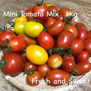 無農薬有機栽培 ミニトマトミックス(野菜)